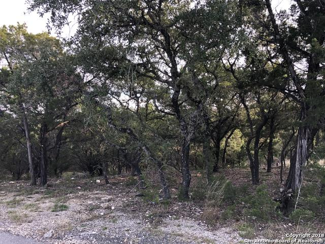 26066 Dull Knife Trail, San Antonio, TX 78255 (MLS #1351446) :: Alexis Weigand Real Estate Group