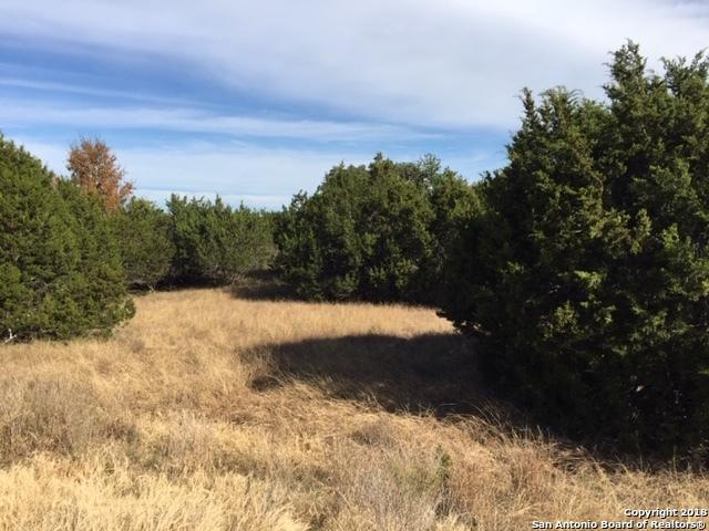 316 Horseshoe Falls, Bandera, TX 78003 (MLS #1351468) :: Alexis Weigand Real Estate Group