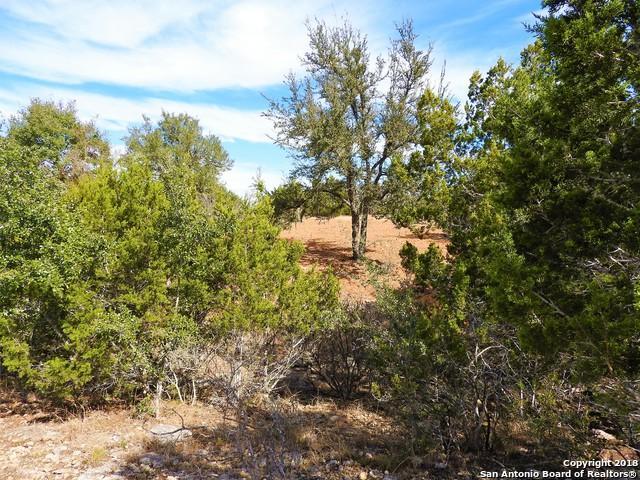 LOT 43 Saddle Tree, Bandera, TX 78003 (MLS #1351500) :: Alexis Weigand Real Estate Group