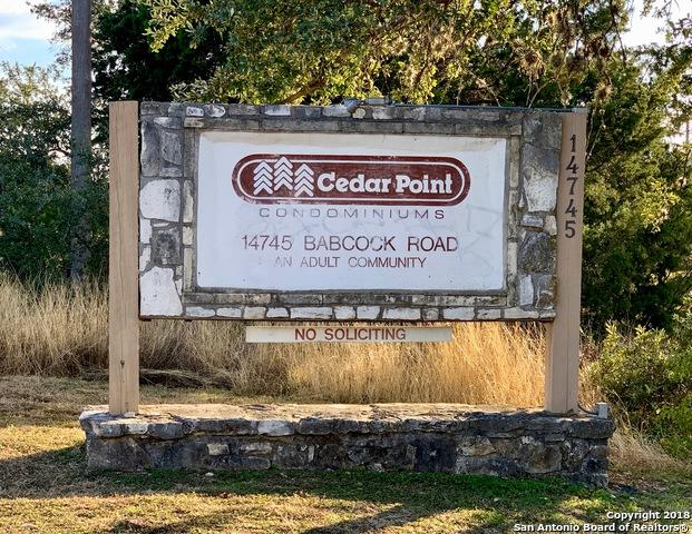 14745 Babcock Rd #705, San Antonio, TX 78249 (MLS #1351542) :: Alexis Weigand Real Estate Group