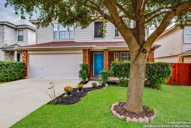 10430 Tiger Field, San Antonio, TX 78251 (MLS #1351545) :: Alexis Weigand Real Estate Group