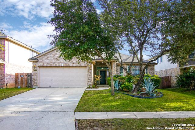 8822 Feather Trail, Helotes, TX 78023 (MLS #1351678) :: Vivid Realty