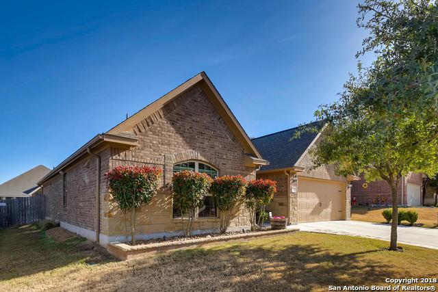 17930 Bierstadt Mt, Helotes, TX 78023 (MLS #1351690) :: Ultimate Real Estate Services