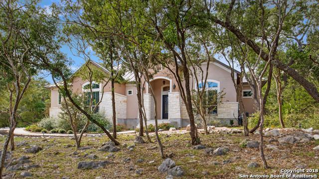 17030 Clovis, Helotes, TX 78023 (MLS #1351761) :: Alexis Weigand Real Estate Group