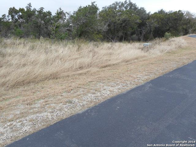 2513 Otter Way, New Braunfels, TX 78132 (MLS #1351851) :: Alexis Weigand Real Estate Group