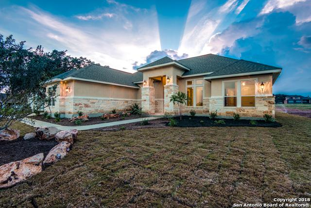 176 Red Rose St, Spring Branch, TX 78070 (MLS #1351869) :: Alexis Weigand Real Estate Group