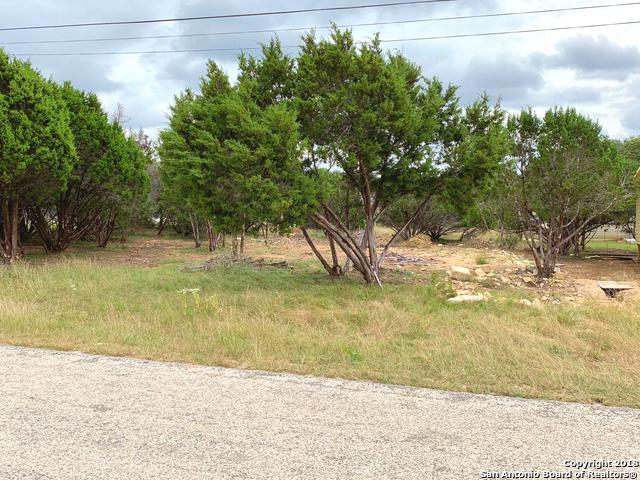 1248 Blueridge Dr, Canyon Lake, TX 78133 (MLS #1352287) :: Tom White Group