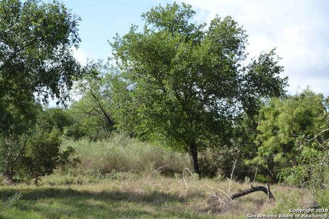 TRACT 15 County Road 4514, Devine, TX 78039 (MLS #1352311) :: The Castillo Group