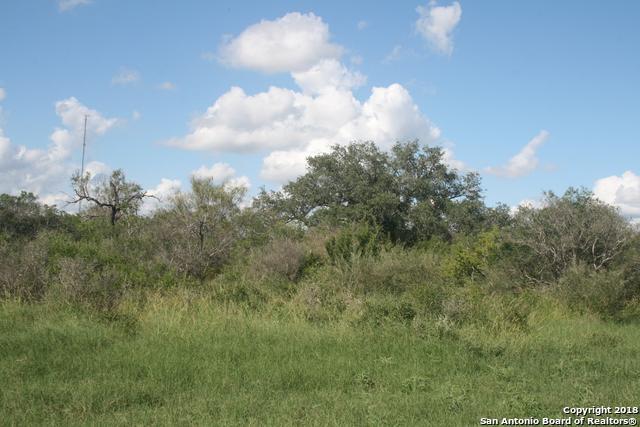 06 County Road 456, Hondo, TX 78861 (MLS #1352348) :: Tom White Group