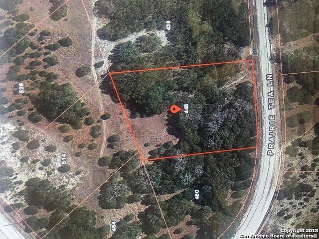 448 Prairie Tea, Canyon Lake, TX 78133 (MLS #1352410) :: Alexis Weigand Real Estate Group