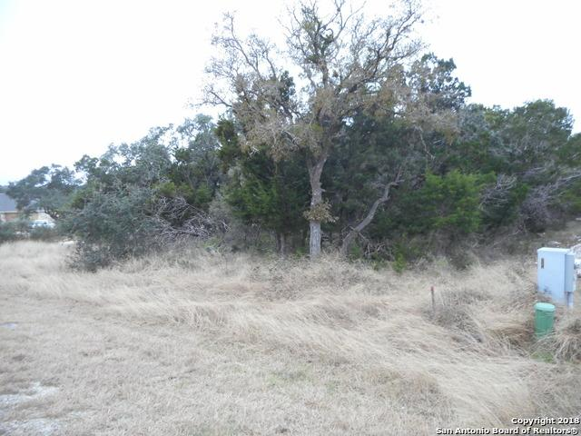 2508 Black Bear Dr, New Braunfels, TX 78132 (MLS #1352443) :: Alexis Weigand Real Estate Group
