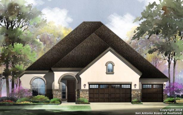 2055 Buckner Pass, San Antonio, TX 78253 (MLS #1352461) :: Alexis Weigand Real Estate Group