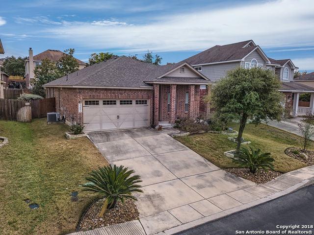 23006 Cardigan Chase, San Antonio, TX 78260 (MLS #1352520) :: Alexis Weigand Real Estate Group
