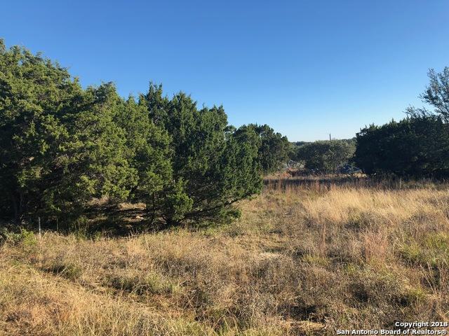 229 Twin Elm Dr, Canyon Lake, TX 78133 (MLS #1352538) :: Tom White Group