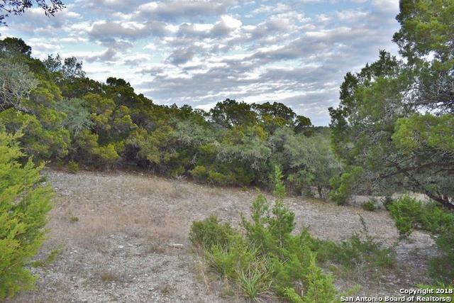 24424 Blanco Rd, San Antonio, TX 78260 (MLS #1352547) :: Alexis Weigand Real Estate Group