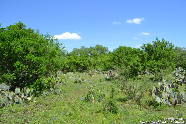 TRACT 2A County Road 473, Castroville, TX 78009 (MLS #1352692) :: Exquisite Properties, LLC