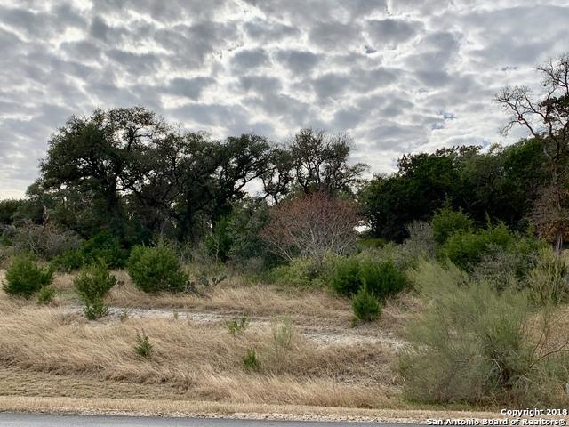 1429 Havenwood Blvd, New Braunfels, TX 78132 (MLS #1352756) :: Alexis Weigand Real Estate Group