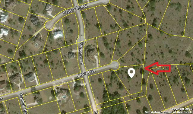 553 Cross Oak, New Braunfels, TX 78132 (MLS #1352763) :: Tom White Group
