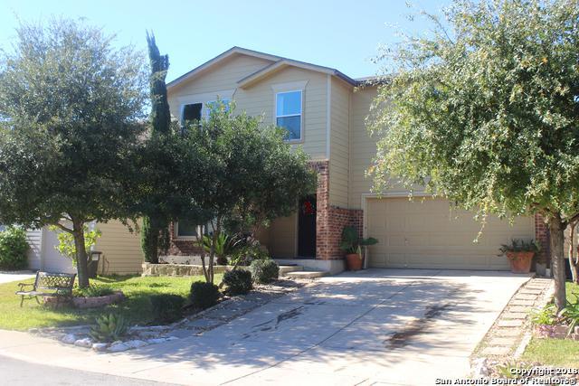 423 Orchard Willow, San Antonio, TX 78245 (MLS #1352790) :: Tom White Group