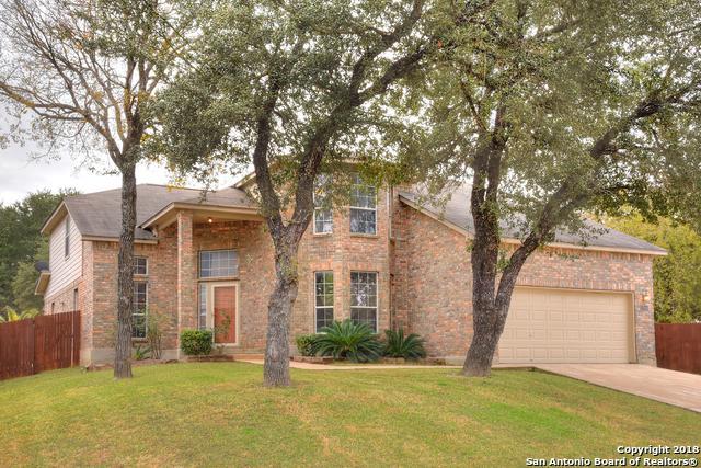 12646 Point Canyon, San Antonio, TX 78253 (MLS #1352847) :: Tom White Group