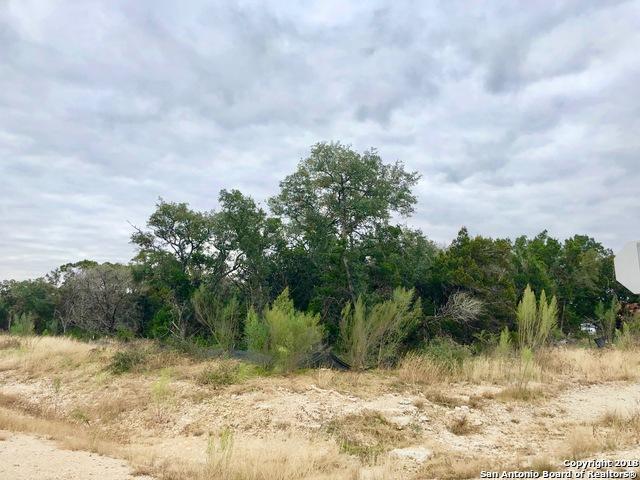 O Pinotage, New Braunfels, TX 78132 (MLS #1352956) :: Tom White Group