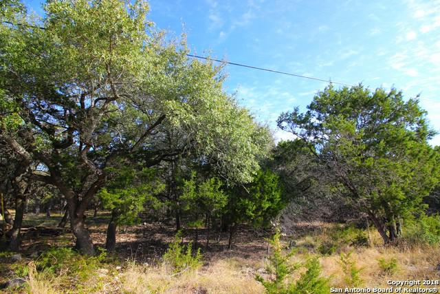 175 Lamplight, Spring Branch, TX 78070 (MLS #1352991) :: Magnolia Realty