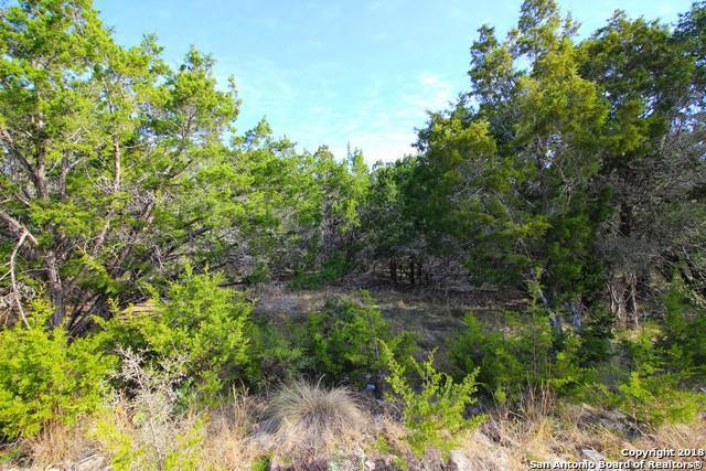 161 Lamplight, Spring Branch, TX 78070 (MLS #1352993) :: Magnolia Realty