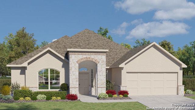 223 Bamberger Ave, New Braunfels, TX 78132 (MLS #1353060) :: Neal & Neal Team