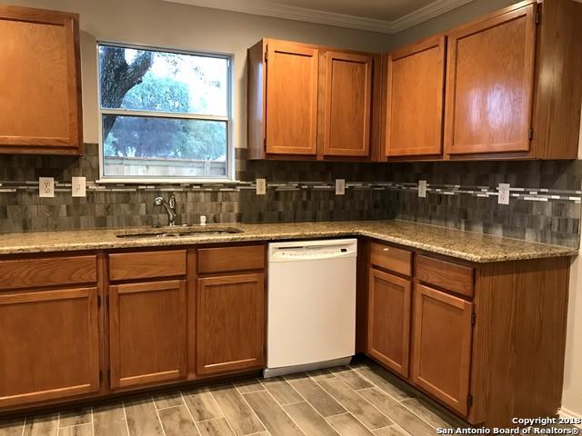 10703 N Cat Mtn, San Antonio, TX 78251 (MLS #1353172) :: Alexis Weigand Real Estate Group