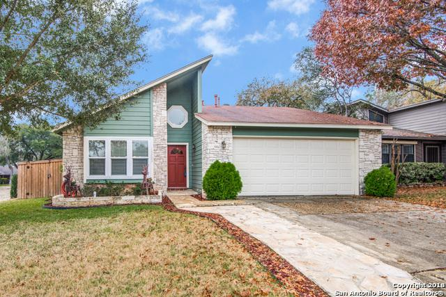 15203 Bent Moss St, San Antonio, TX 78232 (MLS #1353183) :: Alexis Weigand Real Estate Group