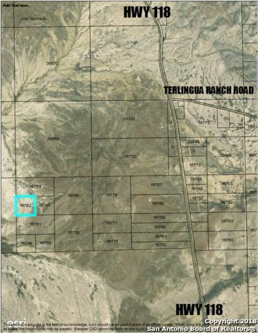 111 Terlingua Ranch Rd, Alpine, TX 79830 (MLS #1353596) :: Neal & Neal Team