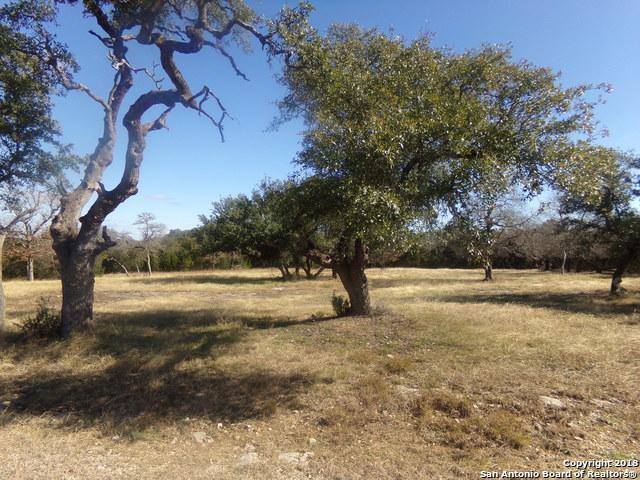 27710 Wild Bloom, San Antonio, TX 78260 (MLS #1353614) :: Neal & Neal Team