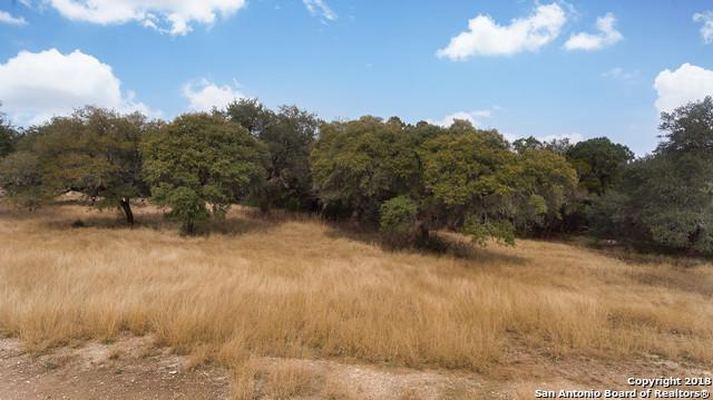 1 Canyon Forest, Helotes, TX 78023 (MLS #1353780) :: Alexis Weigand Real Estate Group