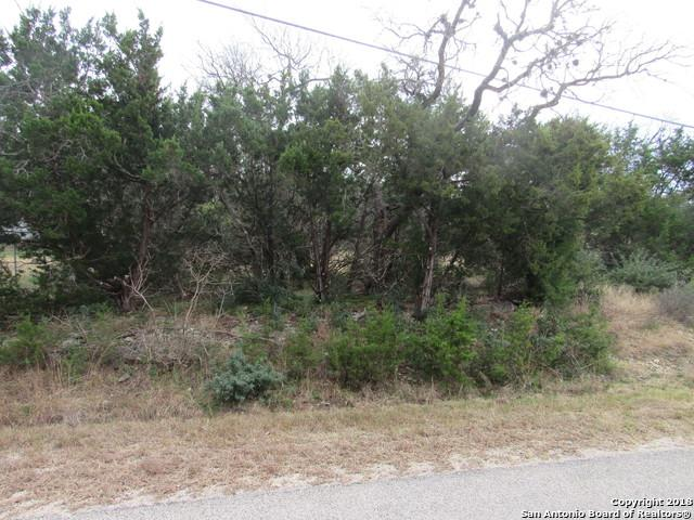 1234 Deer Run Pass, Canyon Lake, TX 78133 (MLS #1353809) :: ForSaleSanAntonioHomes.com