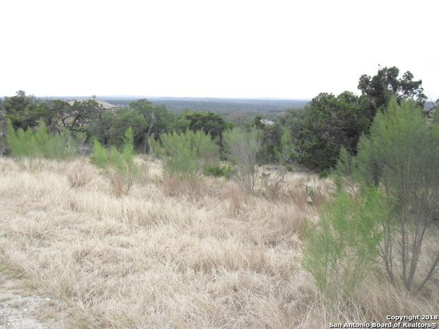 5817 Copper Valley, New Braunfels, TX 78132 (MLS #1353846) :: Tom White Group