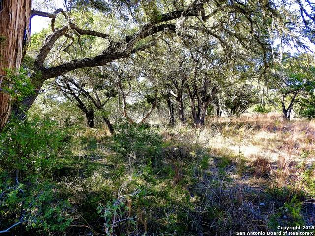 LOT 11-12,23-24 E 9th Street, Lakehills, TX 78063 (MLS #1353989) :: Tom White Group
