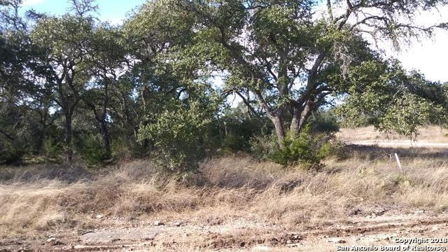 LOT 1382 Robert Sloan, Blanco, TX 78606 (#1354022) :: The Perry Henderson Group at Berkshire Hathaway Texas Realty