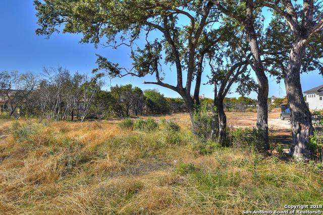 215 Wellesley Landing, Shavano Park, TX 78231 (MLS #1354160) :: Exquisite Properties, LLC