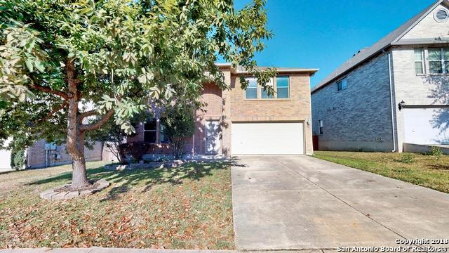 132 Springtree Hollow, Cibolo, TX 78108 (MLS #1354233) :: The Castillo Group