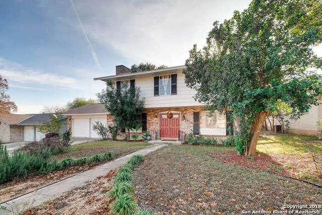 3618 Minthill Dr, San Antonio, TX 78230 (MLS #1354234) :: Tom White Group