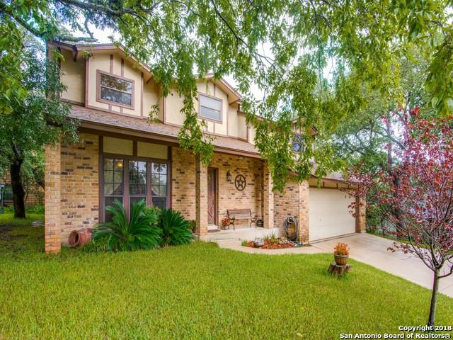 17319 Antlers Cove, Helotes, TX 78023 (MLS #1354251) :: Alexis Weigand Real Estate Group