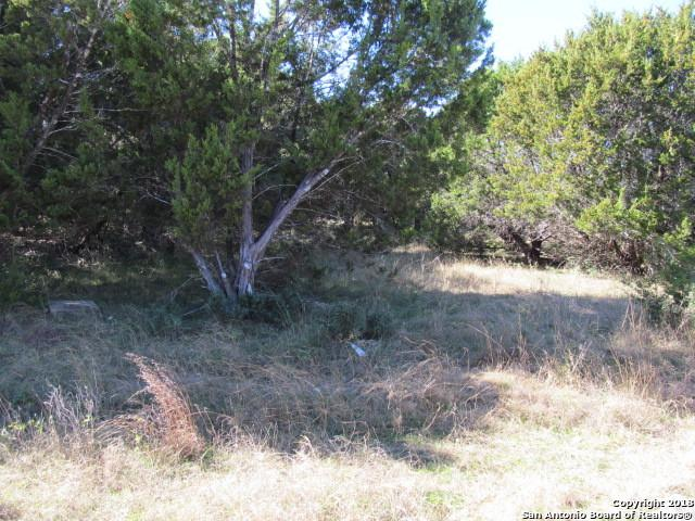 LOT 1009 Blueridge Dr, Canyon Lake, TX 78133 (MLS #1354308) :: Tom White Group