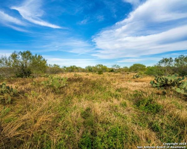 0000 Cr 799, George West, TX 78022 (MLS #1354425) :: Alexis Weigand Real Estate Group