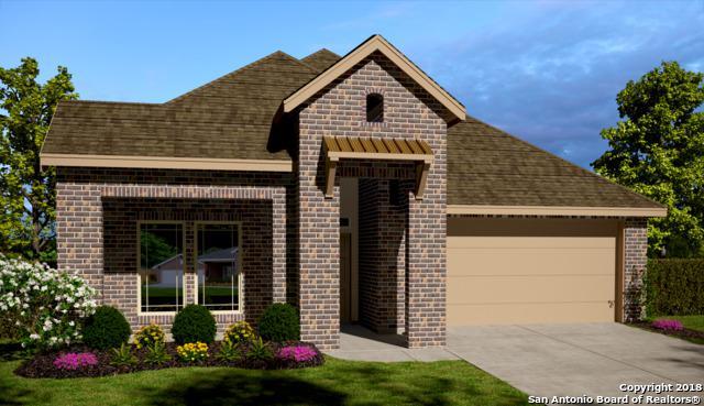 324 Walnut Creek, New Braunfels, TX 78130 (MLS #1354464) :: The Mullen Group | RE/MAX Access