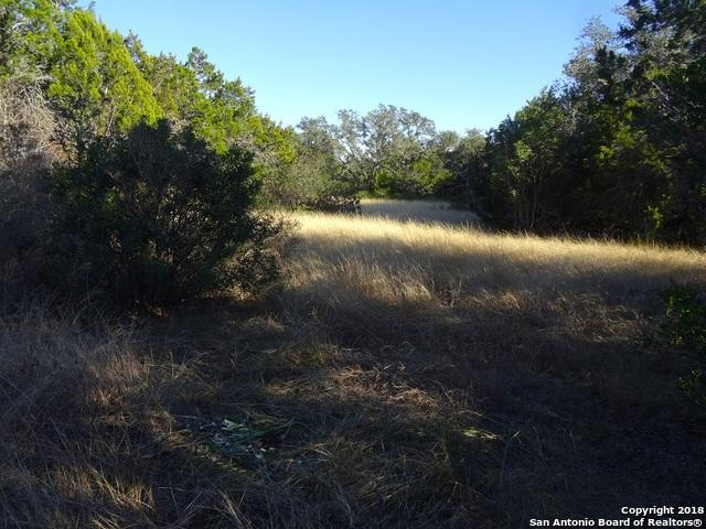 000 County Road 242, Hondo, TX 78861 (MLS #1354494) :: Tom White Group