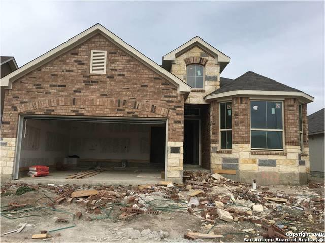 1412 Kamryn Way, New Braunfels, TX 78310 (MLS #1354525) :: Alexis Weigand Real Estate Group