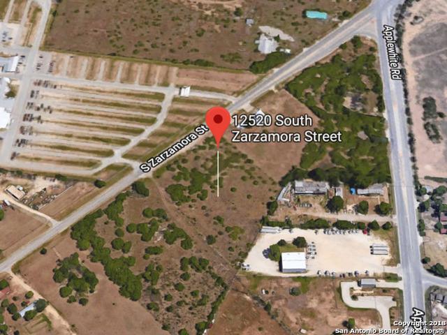 12520 S Zarzamora St, San Antonio, TX 78224 (MLS #1354638) :: Alexis Weigand Real Estate Group