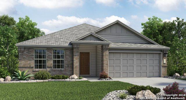 2923 Daisy Meadow, New Braunfels, TX 78130 (MLS #1354646) :: Alexis Weigand Real Estate Group