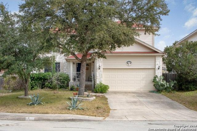 1340 Leopard Hunt, San Antonio, TX 78251 (MLS #1354917) :: Alexis Weigand Real Estate Group