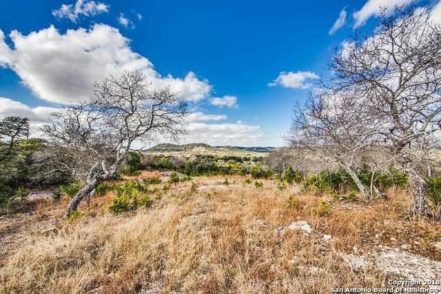 20 Coleman Spgs, Boerne, TX 78006 (MLS #1354938) :: Exquisite Properties, LLC